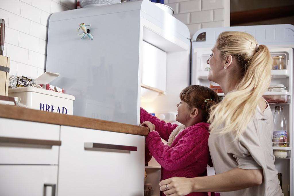 Electrocasnicele și consumul de energie - usa frigider