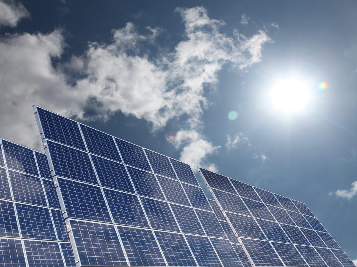 Soluții de economisit energie inspirate de natură