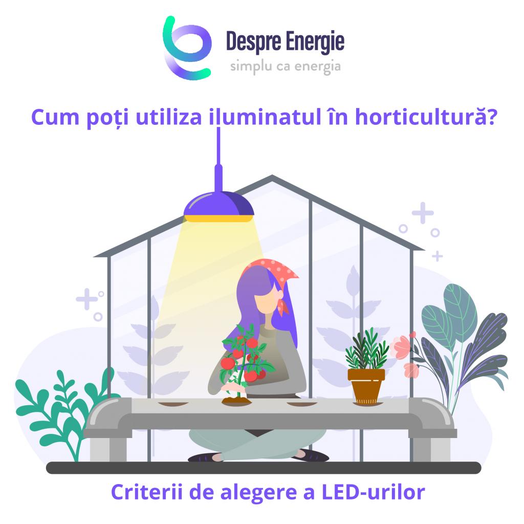 criterii-de-alegere-a-LED-urilor
