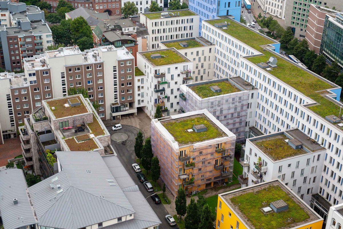 Grădina de pe bloc, o soluție de eficiență energetică