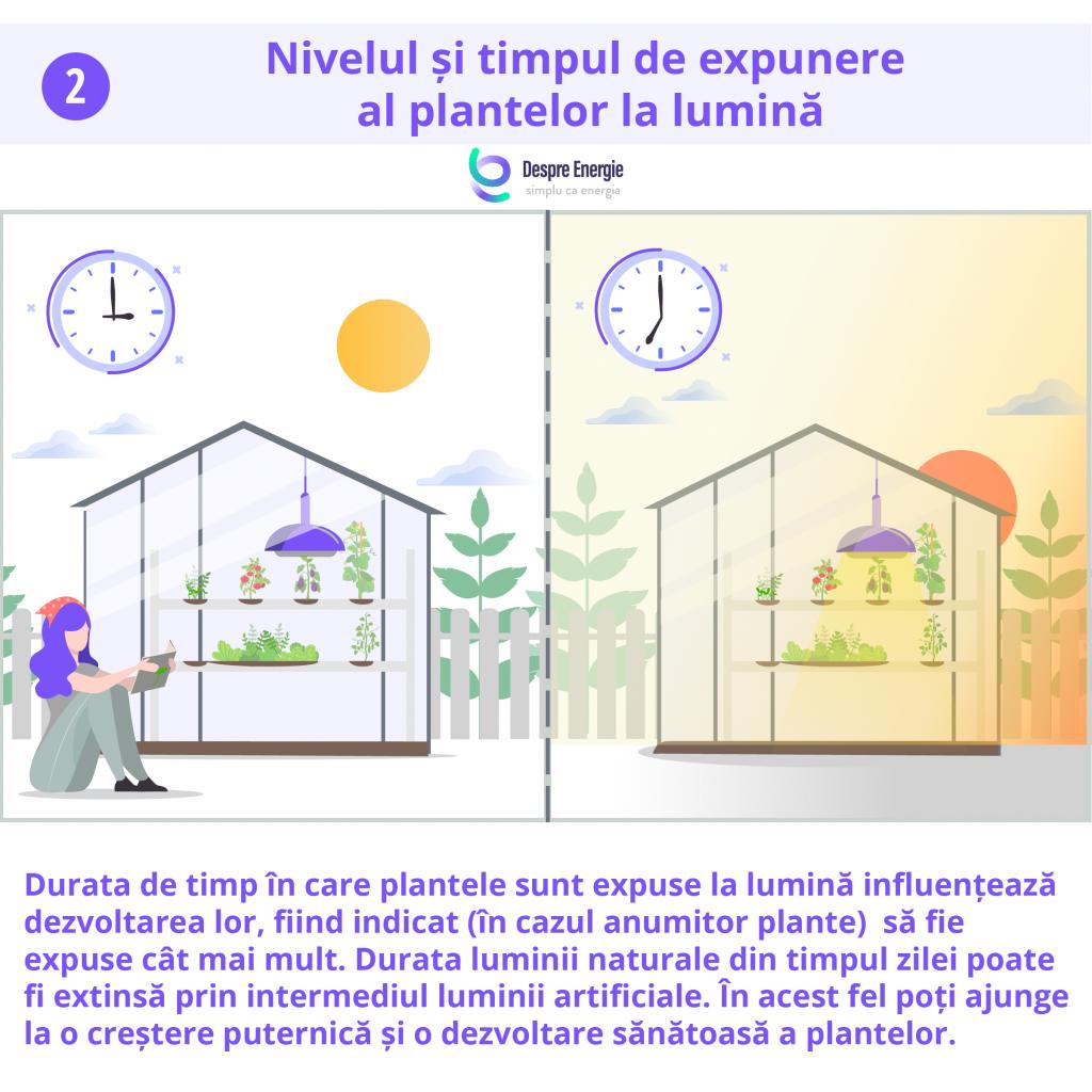 nivelul-si-timpul-al-plantelor-la-lumina